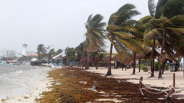 México espera segundo embate de la fortalecida tormenta Franklin