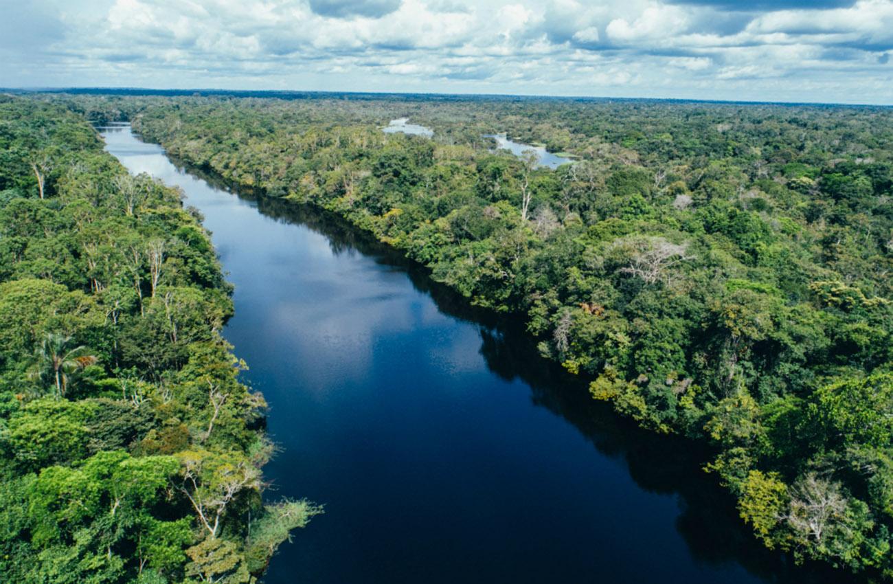 Paneles solares para Amazonia, la última frontera sin energía de Brasil