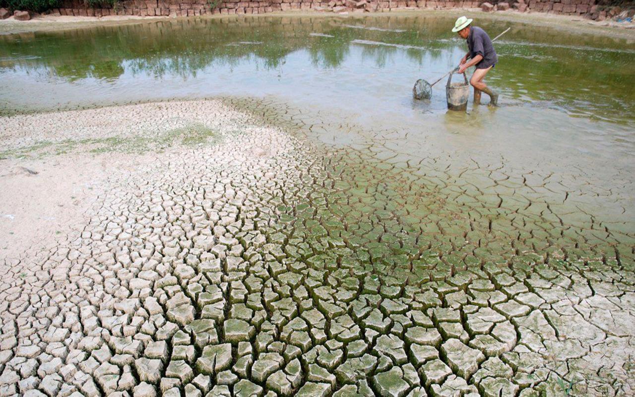 """El cambio climático empuja al planeta hacia un """"punto de inflexión"""""""