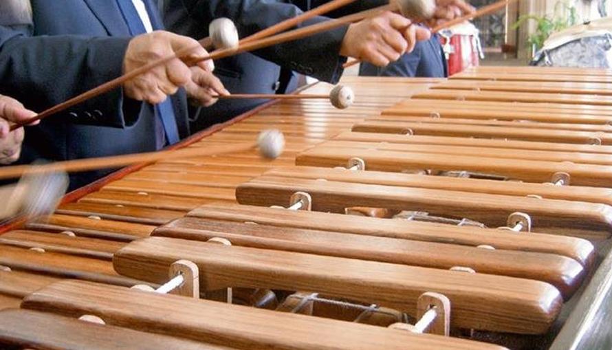 """Max Araujo: """"Contamos con 23 escuelas de marimba en todo el país"""""""