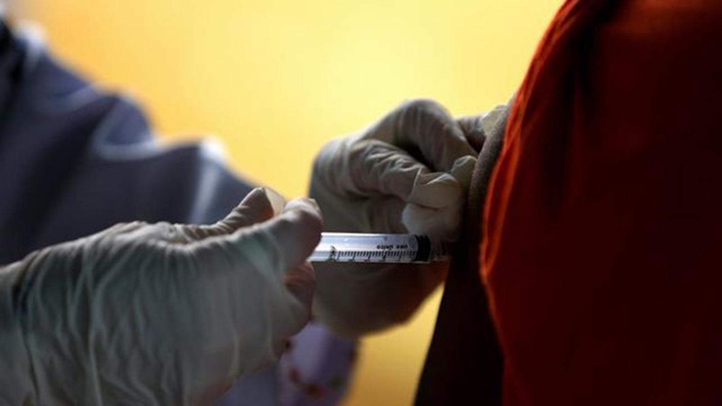 Brasil registra 98 muertes por fiebre amarilla en los últimos siete meses
