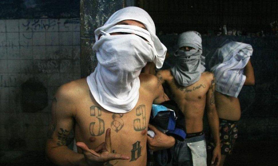 Diputados iniciativa para declarar a las pandillas terroristas