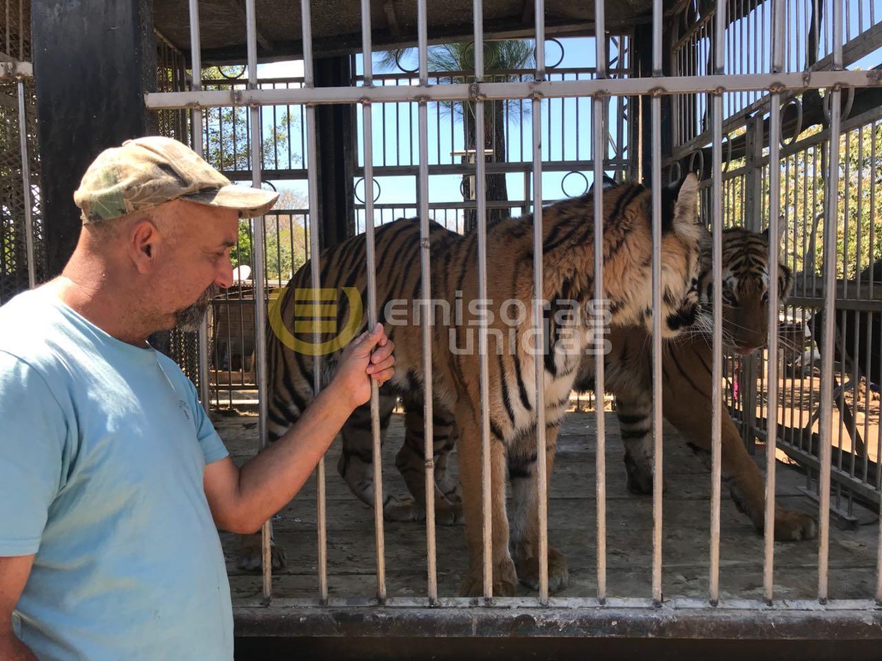 Tigres EU Emisoras unidas Guatemala