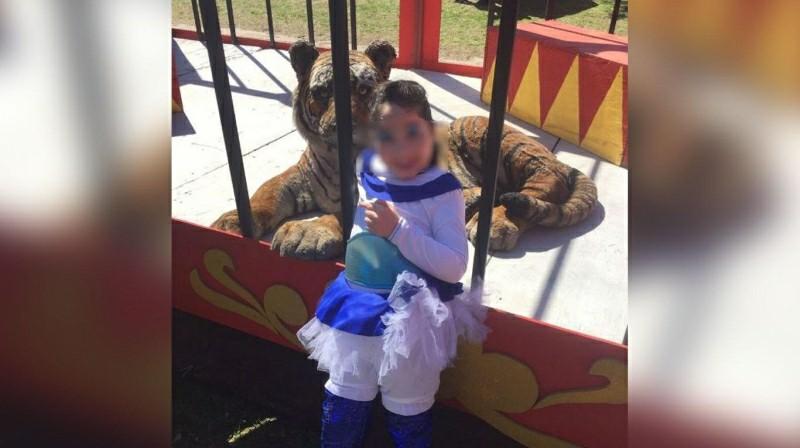 Viral maltrato animal circo argentina emisoras unidas