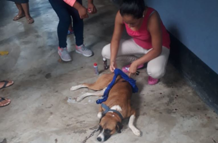 Escuintla, Santa Lucía Cotzumalguapa, Violencia Viral asalto perro Emisoras Unidas
