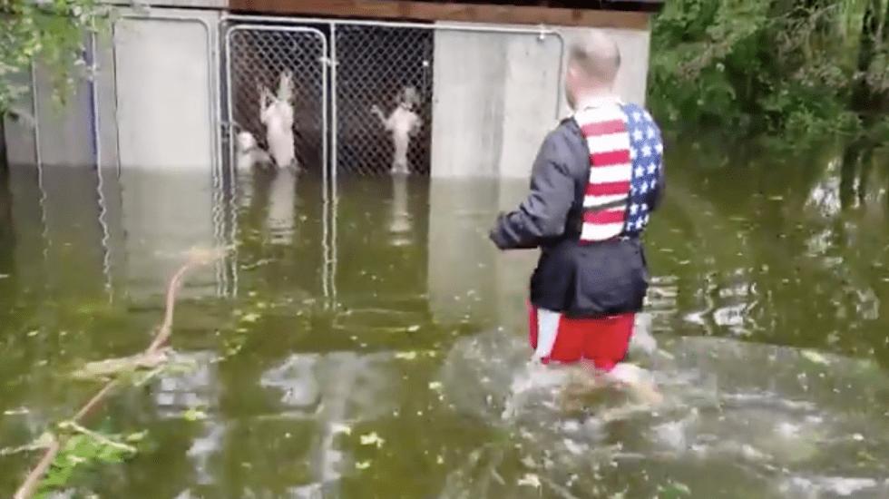 Video Viral Huracán Florence perros