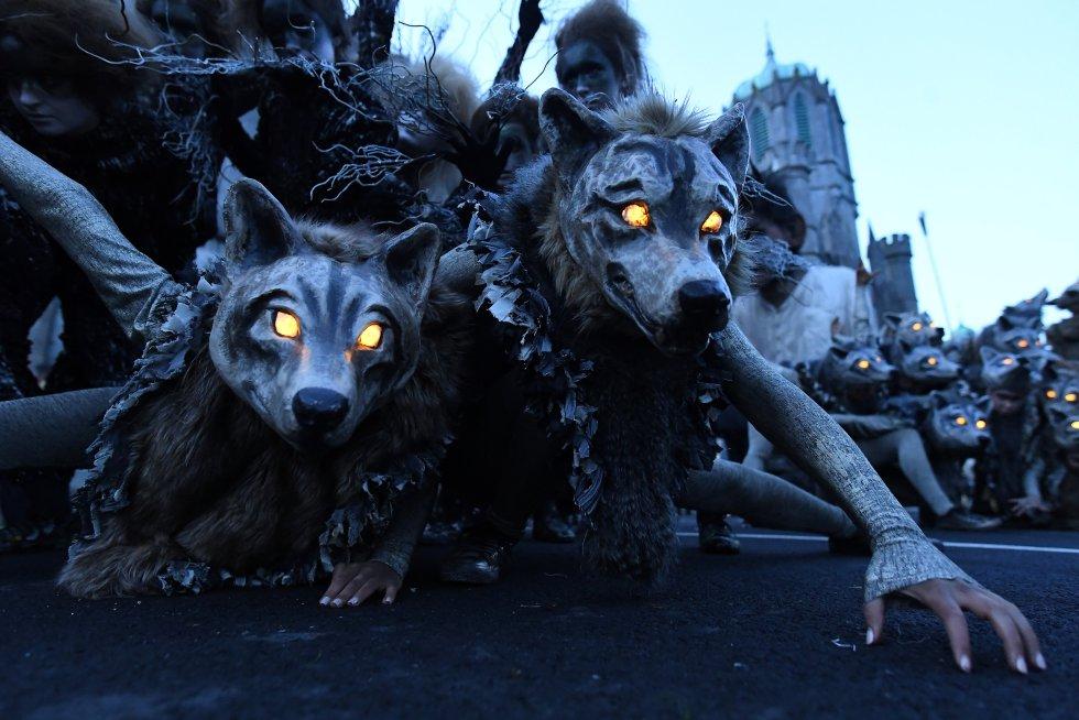 Halloween Noche de brujas