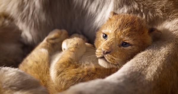 El Rey León tráiler Simba