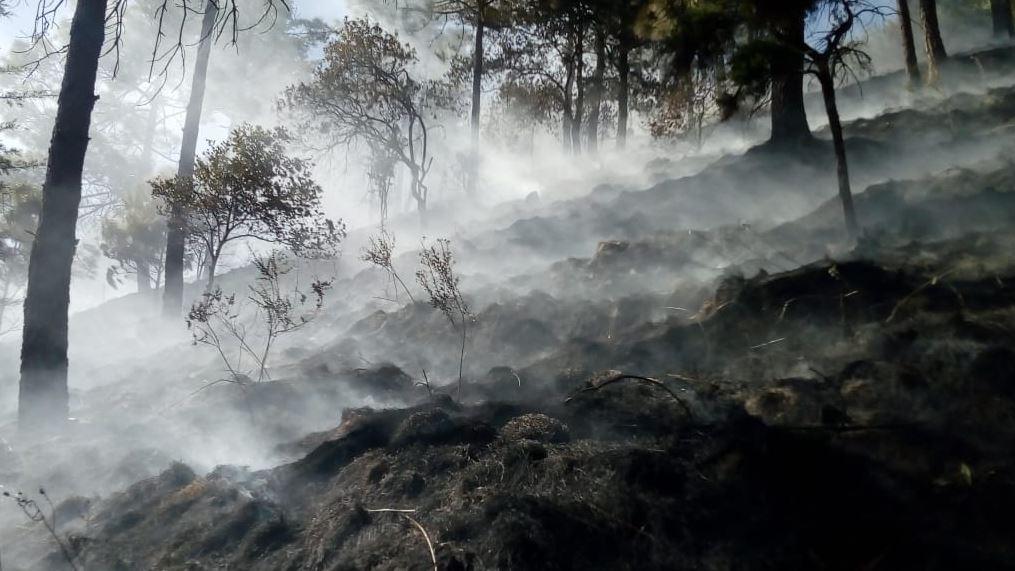 totonicapan-incendio-forestal-paraje-xeatzan