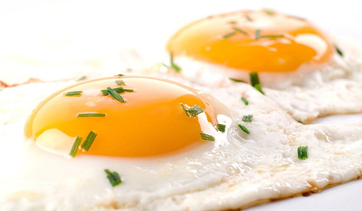 El huevo un alimento diario que no puede faltar