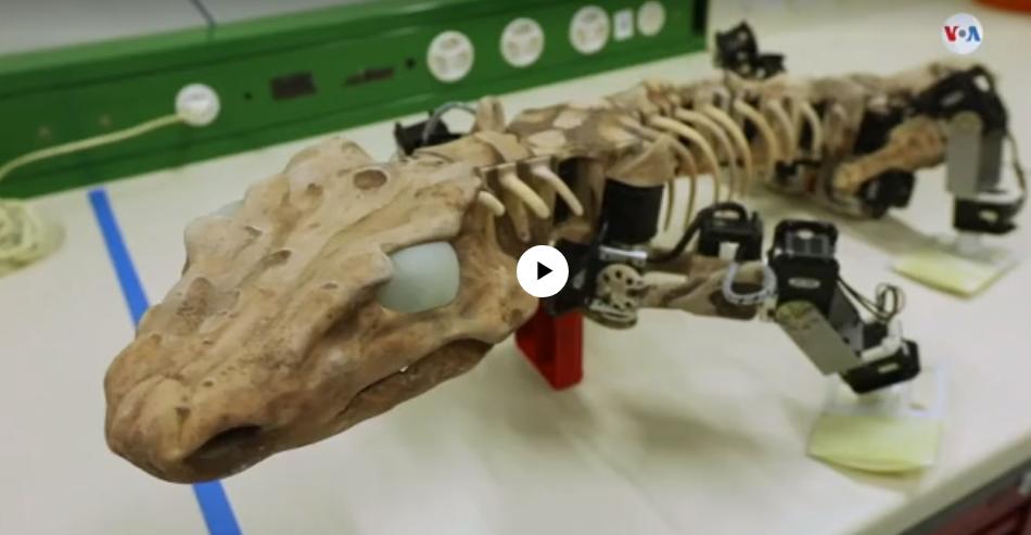 Robot fósil