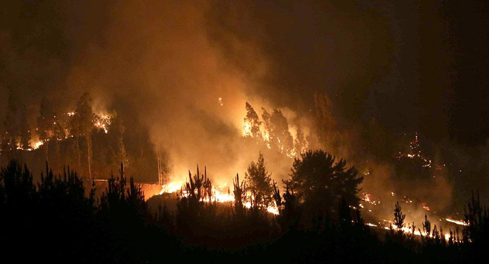 Chile intensifica combate a incendios forestales