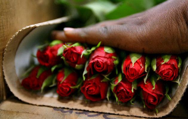 Flores de exportación Agexport