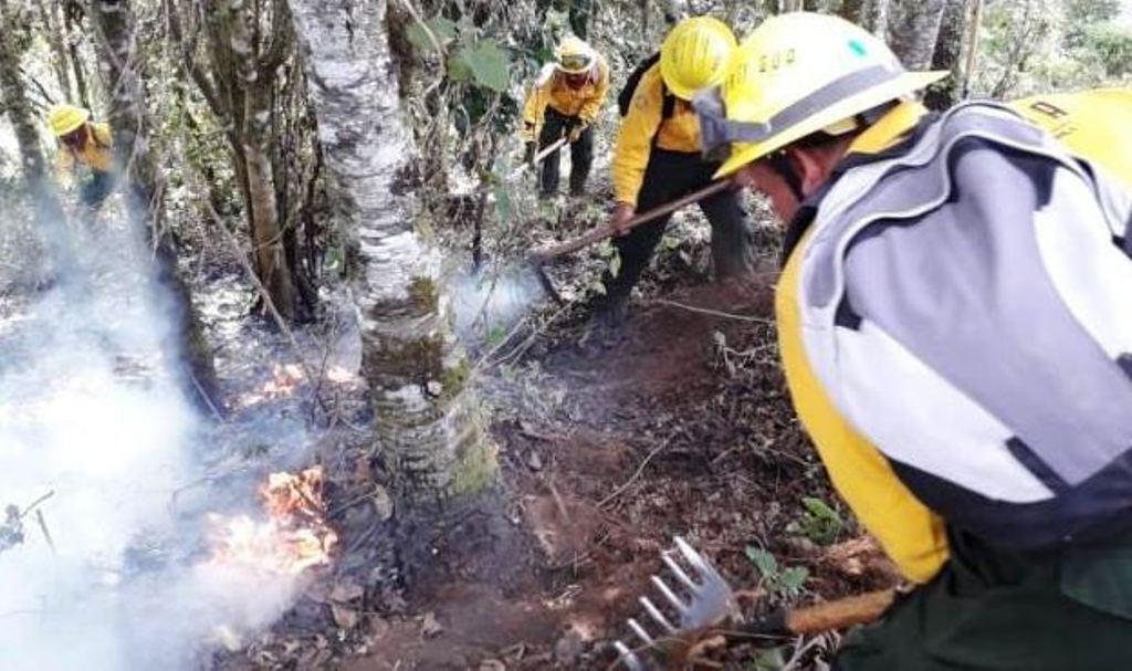 Conred incendios forestales activos