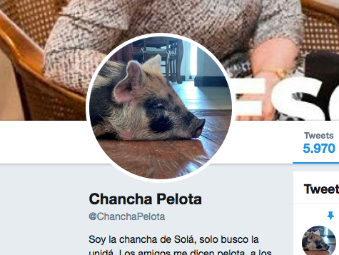Chancha Pelota