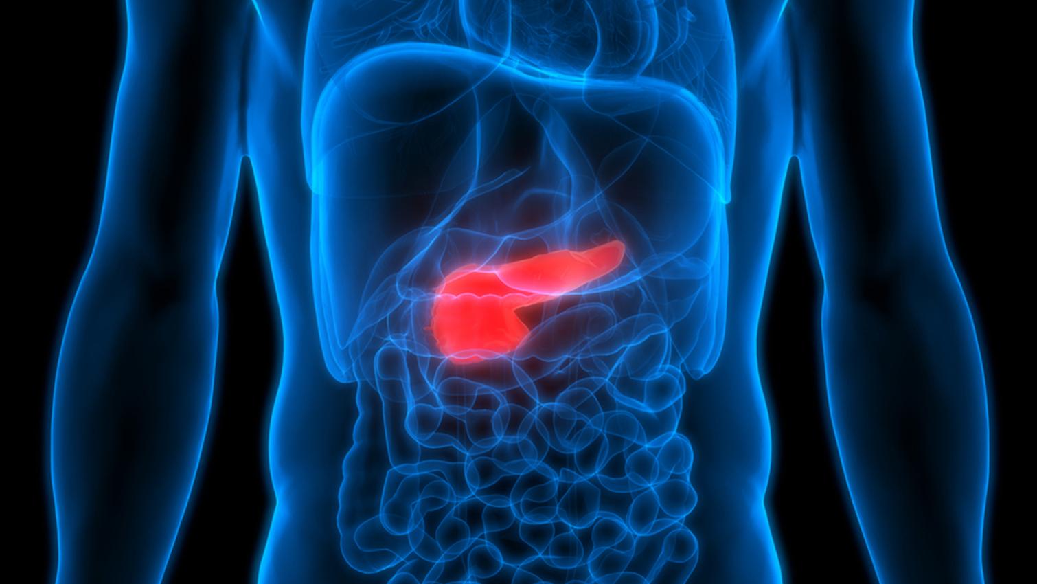Nuevo tratamiento farmacológico frena propagación de cáncer de páncreas Foto con fines ilustrativos