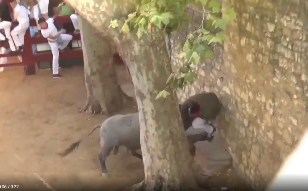 Hombre recibe cornadas de toro