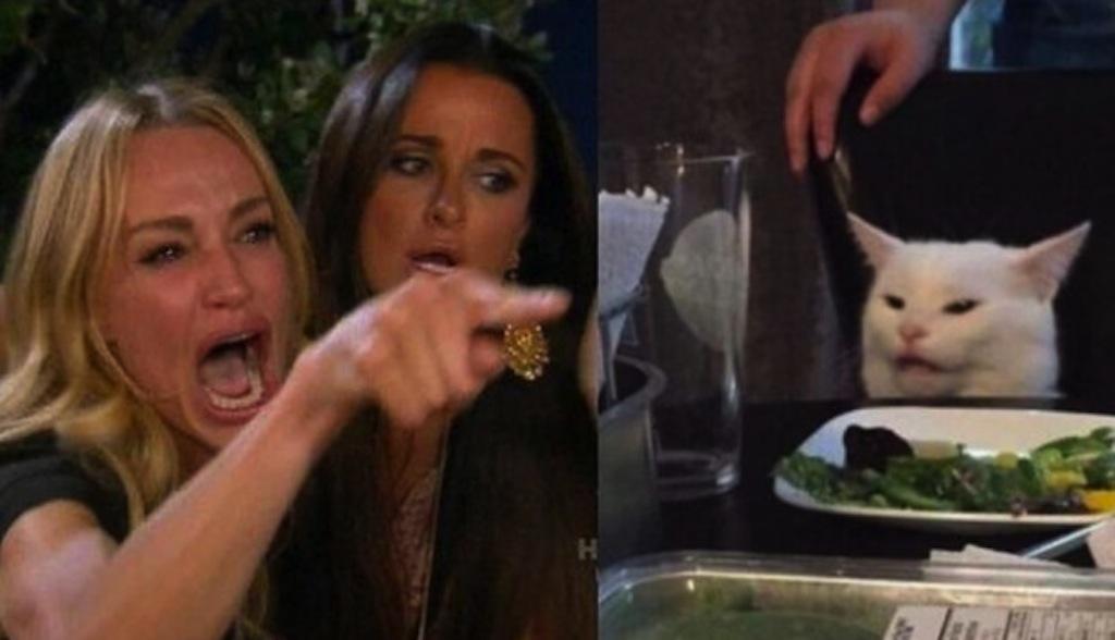 Meme del gato en la mesa y la mujer gritando