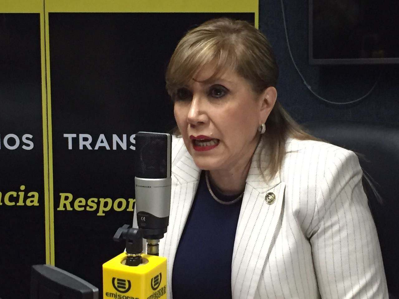 Dina Josefina Ochoa