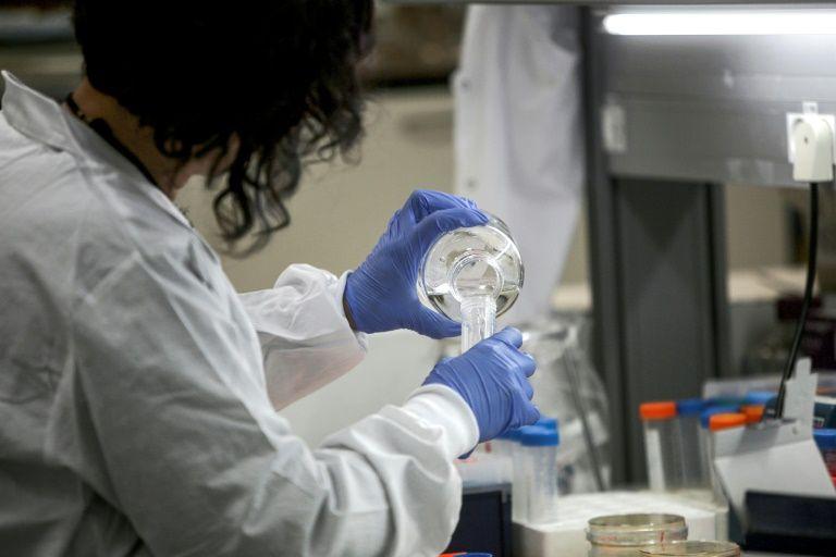 Se buscan ratones de laboratorio en la lucha contra el coronavirus