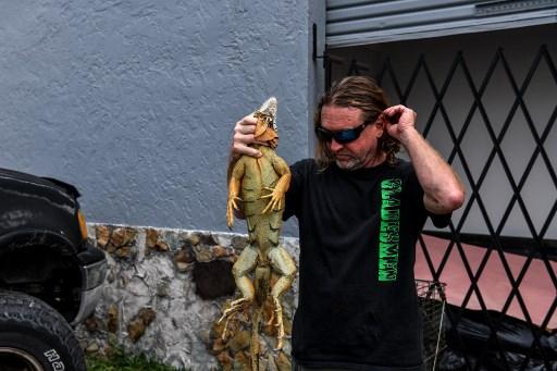 Hombre en EEUU hace mascarillas con piel de iguanas y serpientes pitón