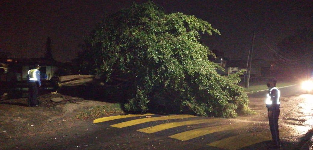 Lluvia y vientos provocaron destrozos en Villa Nueva y San Miguel Petapa