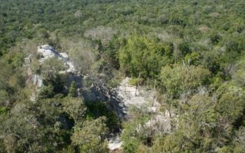 Incendio forestal se registra cerca del parque arqueológico 'El Mirador', Petén