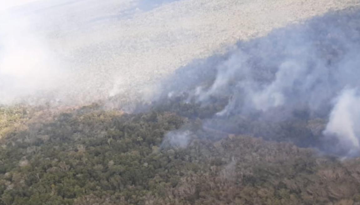 incendio forestal cerca del parque arqueológico El Mirador, Petén