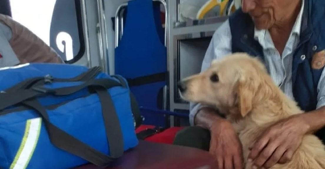 Perro cuida a su dueño en ambulancia