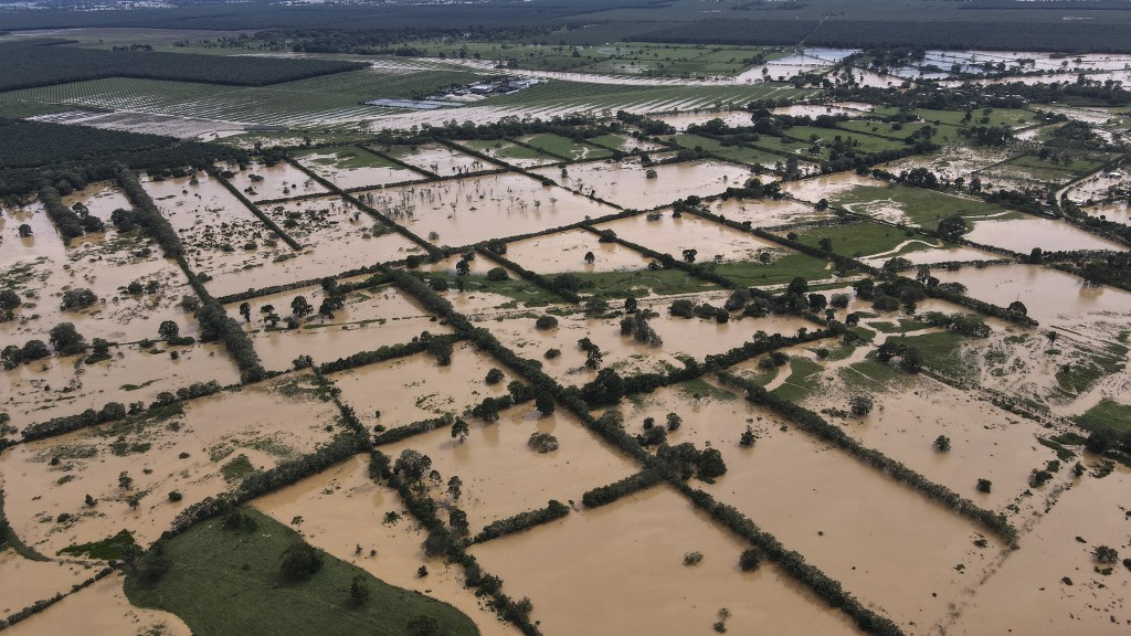 daños en cultivos y muerte de animales por lluvias de depresión Eta