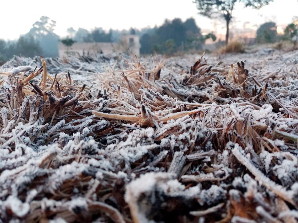 Totonicapán amanece con escarcha por las bajas temperaturas.