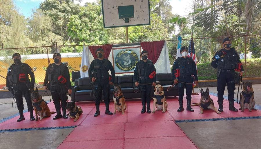 Agentes caninos en retiro en la PNC