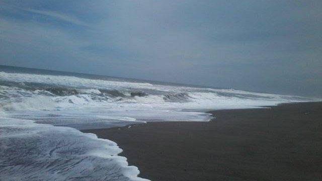 Conred monitorea incremento de altura de las olas