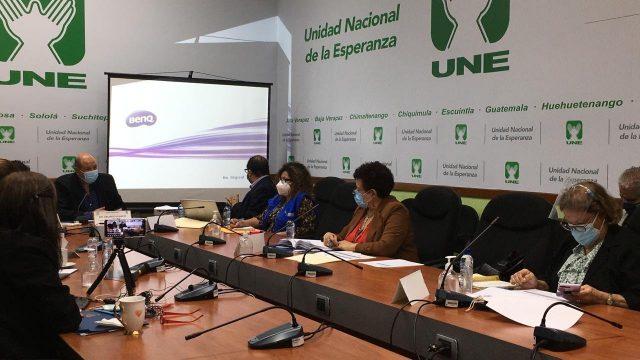 ministra de Salud, Amelia Flores, en citación de bancada UNE