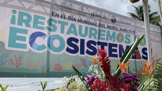 Administración de Alejandro Giammattei promueve jornada de limpieza.